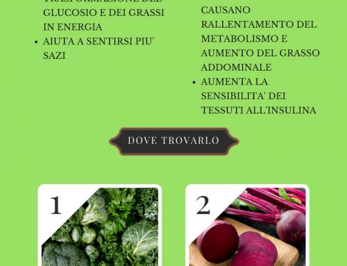 ACIDO ALFA LIPOICO: IL MIGLIOR NUTRIENTE PER RIDURRE IL GRASSO ADDOMINALE